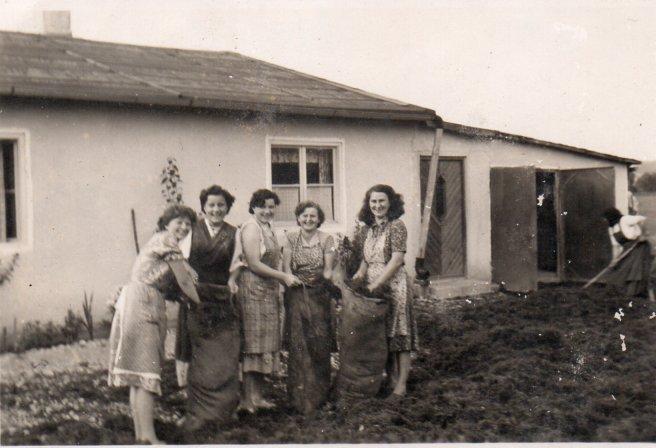 Ein Teil der Belegschaft in den frühen 50er Jahren, Mathias Schmidt GmbH in Triftern