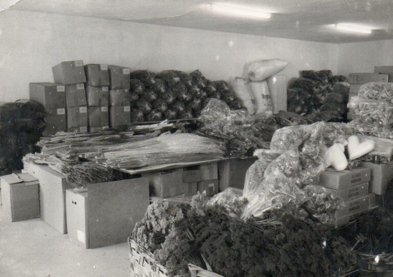 mathias-schmidt-gmbh-grosshandel-selbstbedienung-1968-03