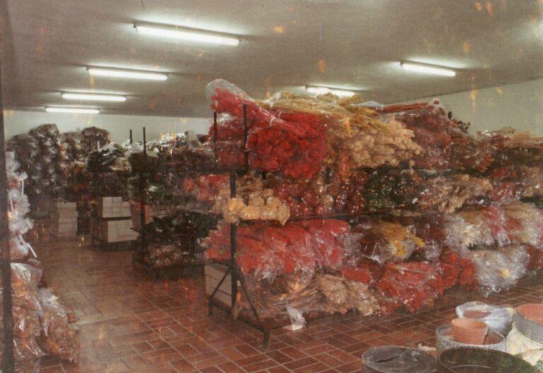 Modernisierung der Verkaufsräume im Jahre 1978, Trockenblumen in den Regalen, Mathias Schmidt GmbH in Triftern