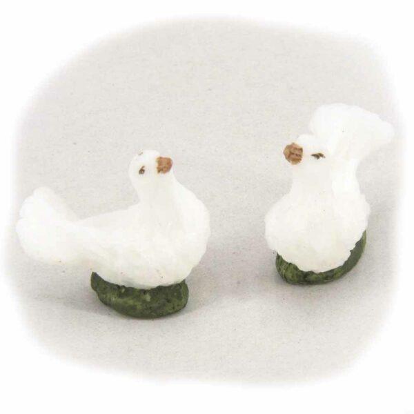 Taube auf grünem Gras sitzend waus Wachs